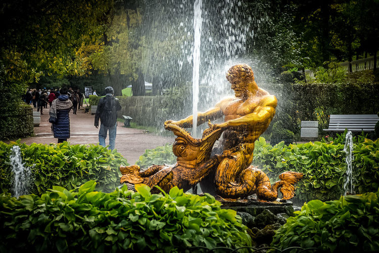 Statue by fountain against plants