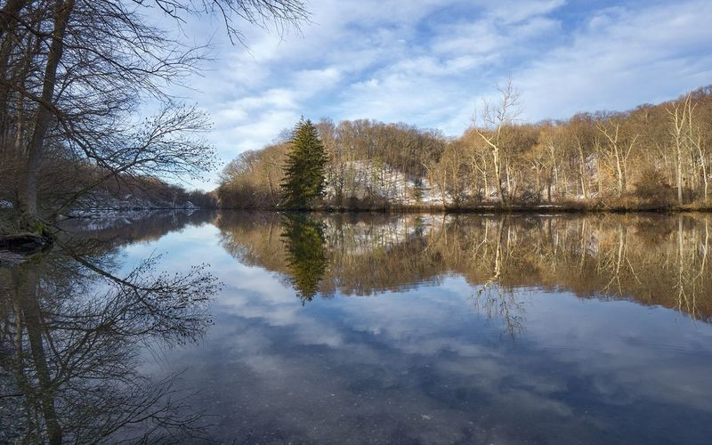 Unseasonably Warm Tree Nature Water Sky Reflection No People Outdoors Lake Reflection Lake Beauty In Nature Scenics Bare Tree Growth Day Wappingers Falls