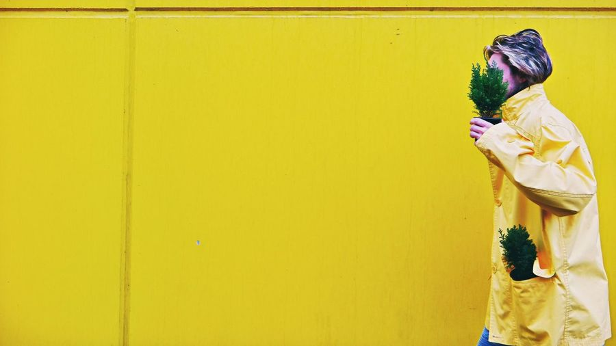 Man holding potted plant against yellow wall