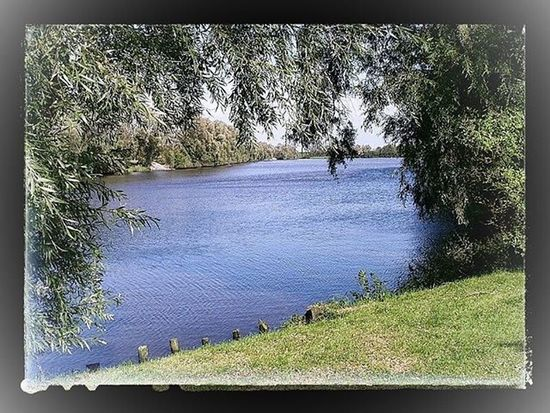 Winter2015 Fluss Landscape Landschaft Picoftheday Bestoftheday Snapseed NRW Olympus Oly