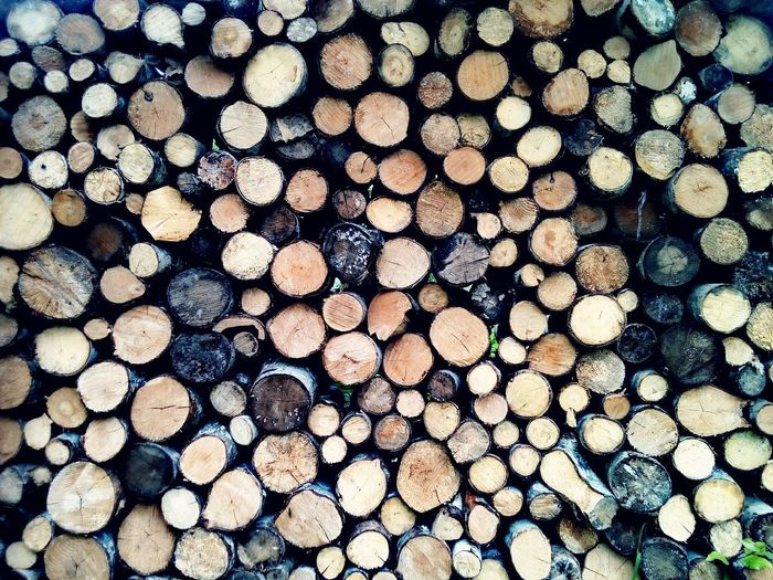 Timber Stack Firewood Log Woodpile Forestry Industry Heap Lumber Industry Abundance Deforestation Backgrounds Wood - Material Large Group Of Objects Textured  Pattern Full Frame Close-up Day No People Circles Background Photography Background Pile Stacked Wooden Background Outdoors Textured  Environmental Issues Fuel And Power Generation