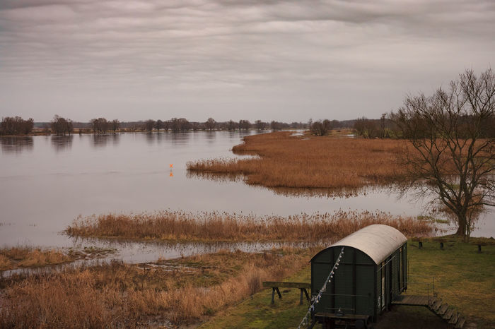 At the old port @ Groß Neuendorf there is a beautiful view at the Oder river, with a nice railway wagon known for theatre play. Photo taken @ Groß Neuendorf, 2017-12-31 EyeEmNewHere Still Life Cloudy Cloudy Day Oder River Riverside Beauty In Nature Cloud - Sky Day Dull But Beautiful Grasses Grasses In The Wind Landscape Nature No People Oder Oderbruch Old Port Outdoor Photography Outdoors Railway Wagon River Scenics Tranquil Scene Waggon Water