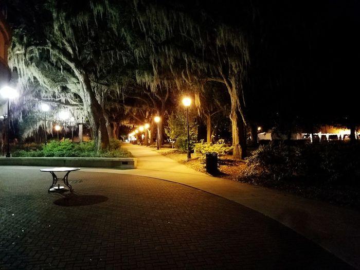 Park Nightphotography GalaxyS7Edge Musicinthepark