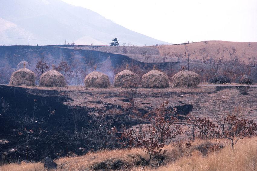 Beauty In Nature Landscape Mountain Open Burning Spring Ultimate Japan 飯田高原 Oita 大分 KYUSHU Japan