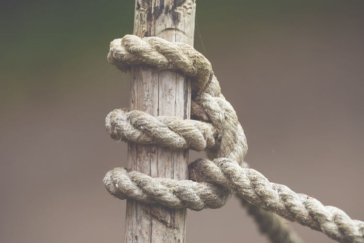 Close-up of rope tied on wooden pole