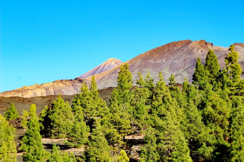 volcanic landscape..... Tenerife EyeEmNewHere Vacations Vacation Traveling Travel Photography Travelling Tranquility Tranquil Scene Travel Destinations Idyllic Idyllic Scenery Scenics Scenery Nature Photography Natural Beauty Beauty In Nature Beautiful Day Beautiful Nature Blue Sky Clear Sky Tree Rural Scene Blue Hill Rock - Object Forest Sky Landscape Geology Volcanic Landscape Volcanic Crater Volcano Natural Landmark Rock Formation Arid Climate