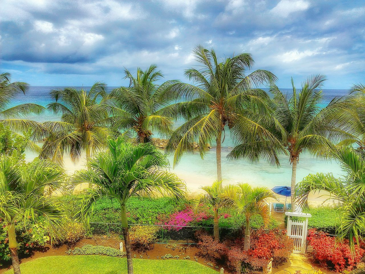 palm tree, sky, tree, cloud - sky, tranquility, tranquil scene, nature, water, scenics, beauty in nature, outdoors, sea, day, no people, growth, vacations, swimming pool, horizon over water