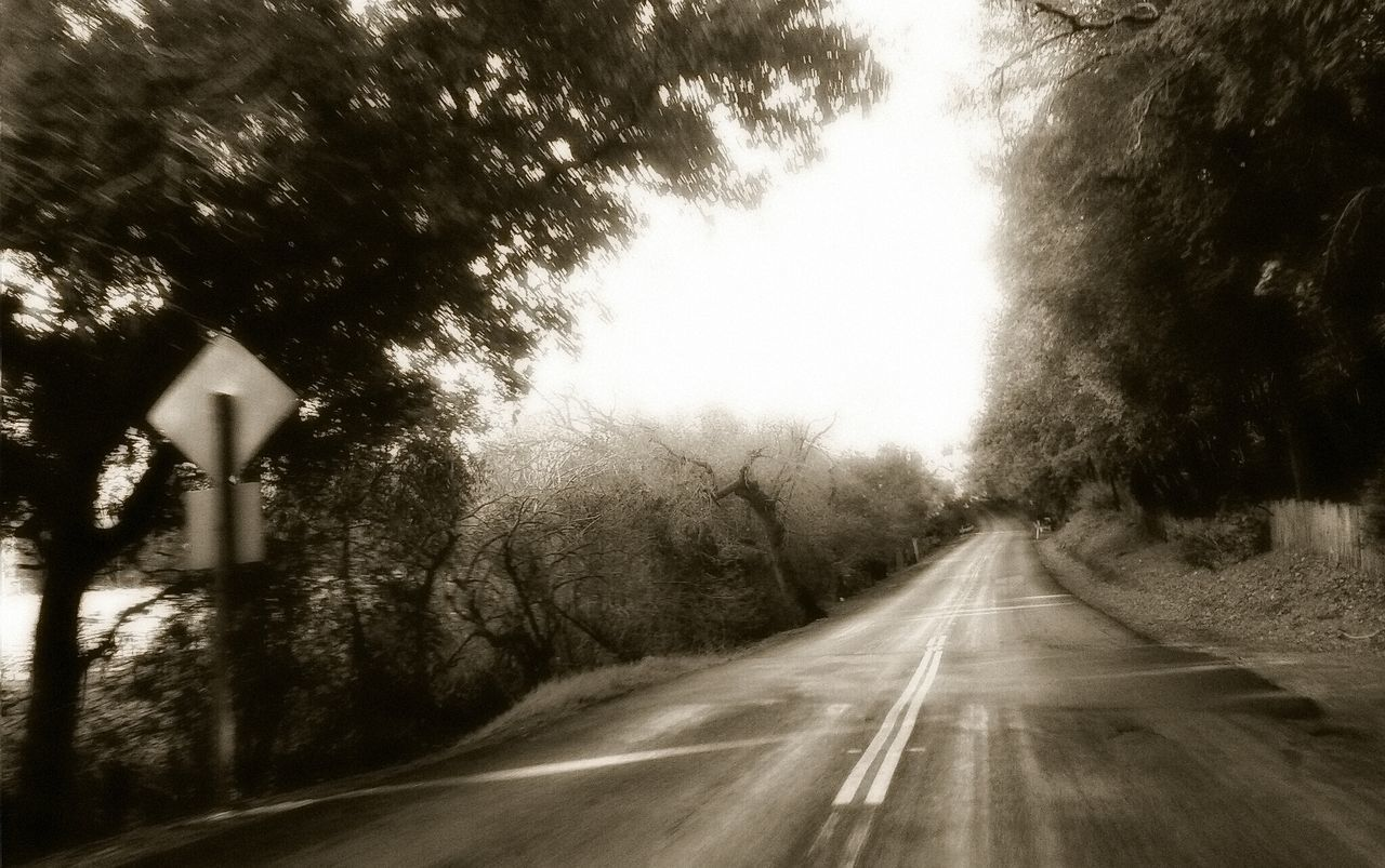Black And White EyeEm Best Shots - Black + White The Way Forward Road Transportation Diminishing Perspective Vanishing Point Country Road On The Road Road Marking Empty Road Narrow Leading Speed Journey Perspectives Tree No People Day Asphalt Shadow Road Trip Blurred Motion Blurry Showcase: January