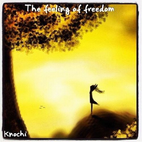 THE FEELING OF FREEDOM  Liker Likeall Love Liking Freedom Liketeam Like Likes4likes Photooftheday Likeback Likeforlike Likealways Entdecken Likes L4l Like4like Instagood Likesforlikes Tflers Tagsforlikes Likebackteam