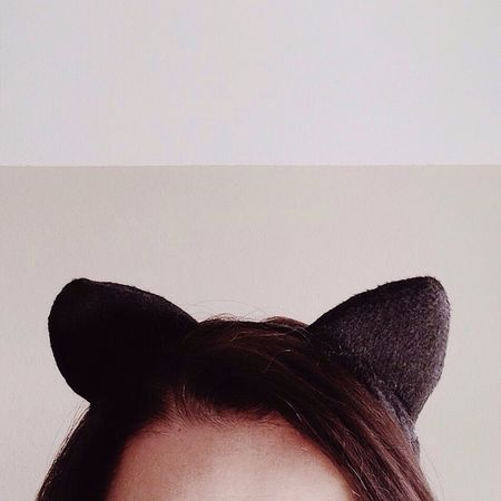 Meow Cat Catcontent Miezekatze Meow