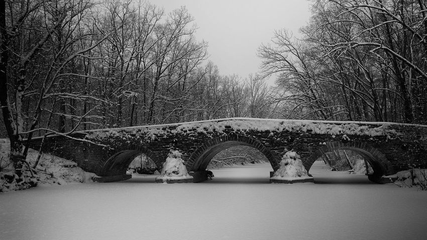 Snow Storm Snow Storm 2018 Arch Arch Bridge Architecture Bare Tree Bridge Bridge - Man Made Structure Built Structure Cold Temperature Connection Day Nature No People Outdoors Plant River Snow Tranquility Tree Water Winter