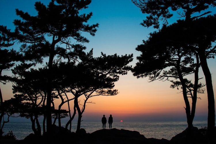 SILHOUETTE OF COUPLE ON SEASHORE AT SUNSET