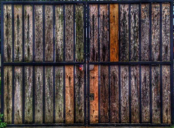 Full frame shot of wooden tree