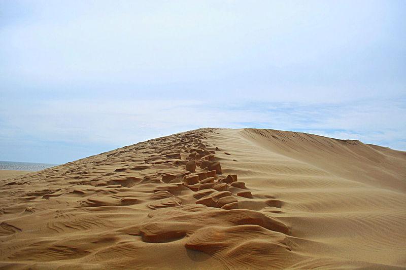 View of sand dunes in desert