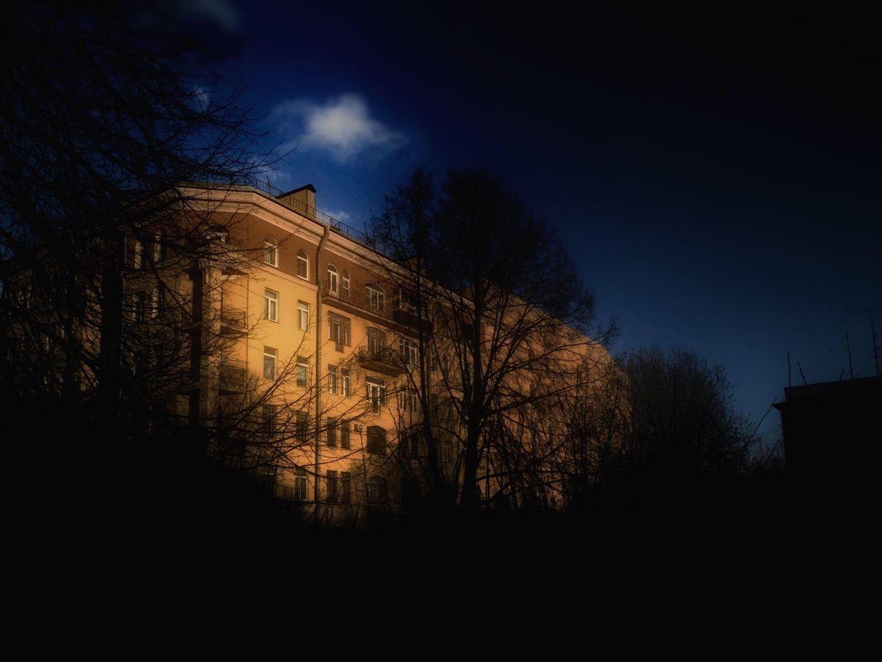 Building Behind Trees At Night