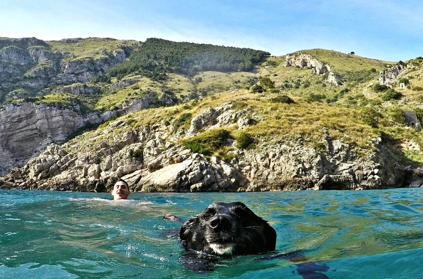 Italy Baia Di Jeranto Nerano Sorrentocoast Sorrento Travel Dogslife Dog Dog Swimming Dogswimming Sea Nature Turist Gopro Goprohero4