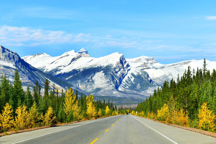 """The road 93 beautiful """"Icefield Parkway"""" in Autumn Jasper National park,Canada Mountain Tree Plant Sky Tranquil Scene Beauty In Nature Nature Tranquility Cloud - Sky Scenics - Nature No People Non-urban Scene Mountain Range Icefield Parkway Alberta Canada Highway North America Canadian Rockies  Jasper Jasper National Park Outdoor On The Road Banff National Park  Autumn"""