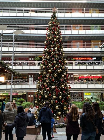 Group of people at christmas tree