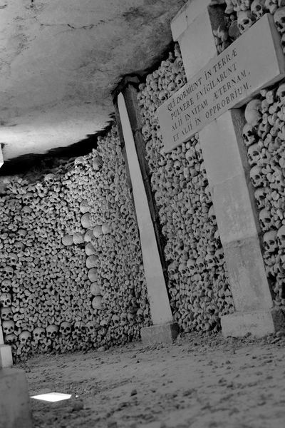 France Paris Paris, France  Skull Sculpture Vacations Architecture Black And White Black And White Friday Catacombes De Paris Catacombs Close-up Communication Day Hq Iso100 Katakomben No People Outdoors Sand Schwarzweiß Sculptures Skull Skulls Skulls And Bones Text