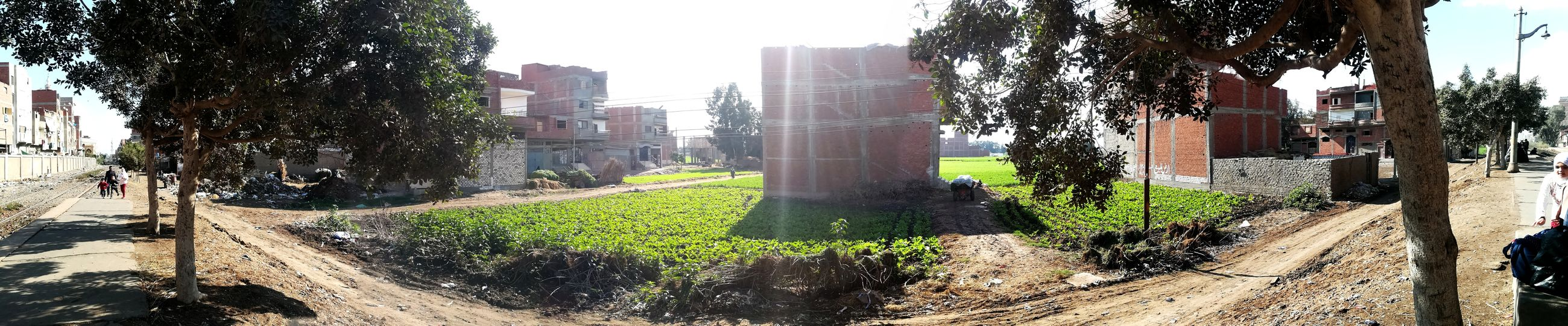panorama ❤💜 village ''''' nature ' Village EyeEmNewHere Sun Green Growth Ground Outdoors Sunlight Day Tree Shadow No People Built Structure Architecture Nature Sky