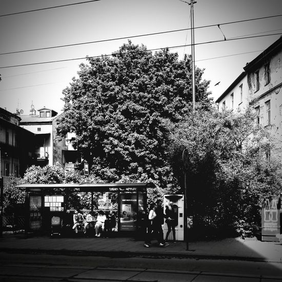 Krakow Eyemphotography Streetphotography Photography De Black & White Galosikphotigraphere GalosikFotografę Springtime Springinkrakow WiosnaWMieście Spring Has Arrived City Life