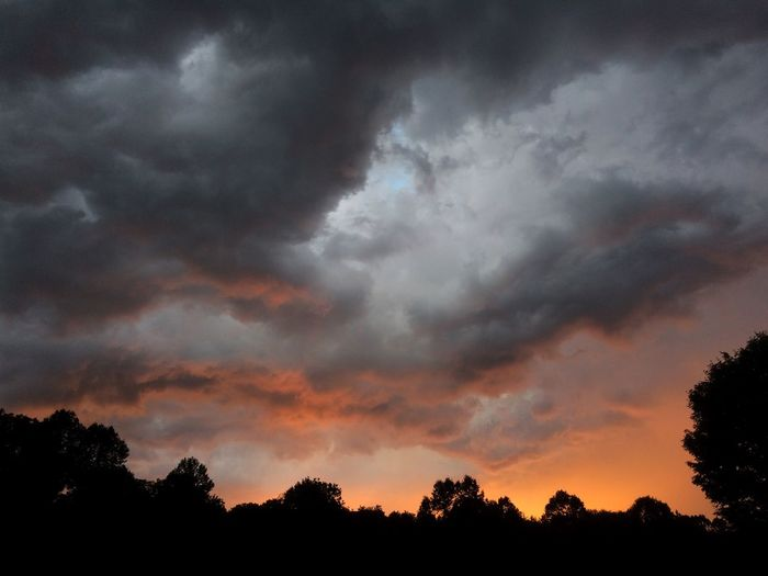 Stormy sunset Cloud - Sky Sky Tree Silhouette Beauty In Nature Sunset Plant Outdoors Overcast Dusk Tranquil Scene Tranquility Storm Cloud Dramatic Sky Scenics - Nature Low Angle View No People Storm Nature Growth
