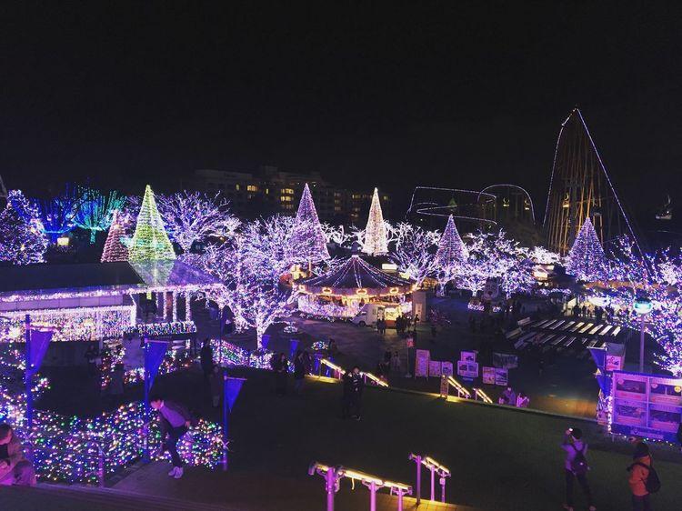Jewellumination Tokyo,Japan Yomiuriland Night Illuminated Celebration Christmas Christmas Decoration Christmas Lights Christmas Tree