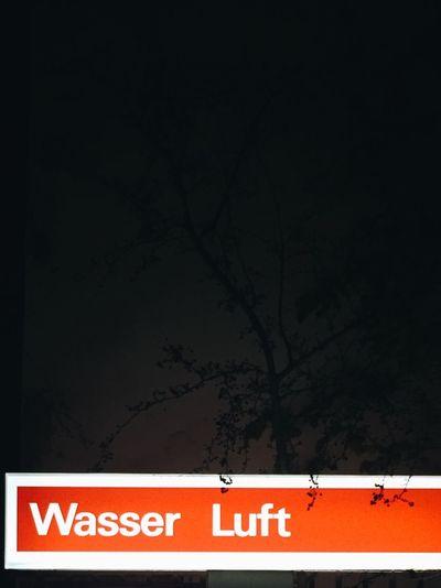 Illuminated text on tree against sky at night