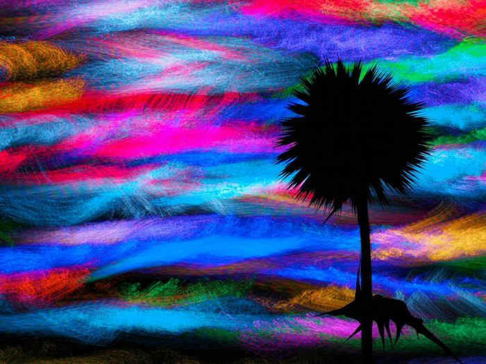 Multi Colored Abstract No People Motion Nature_collection Nature Best EyeEm Shot EyeEm Gallery Lightpaintingart Lightpainting_photography Artistic Expression EyeEm Lpwalliance Lights And Shadows Light In The Darkness Lightphotography Lightpaintingbrushes Abstractphotography Lpwa Colorsplash_theworld Colors and patterns Color Splash Colorfull Colorphotography Colored Background