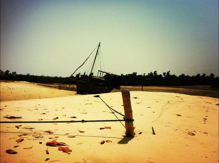 Desert Boat Sand Madagascar  Mangrove