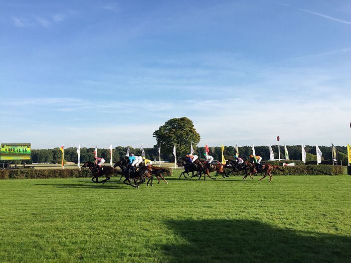 Horse Racing On Grassy Field Against Sky