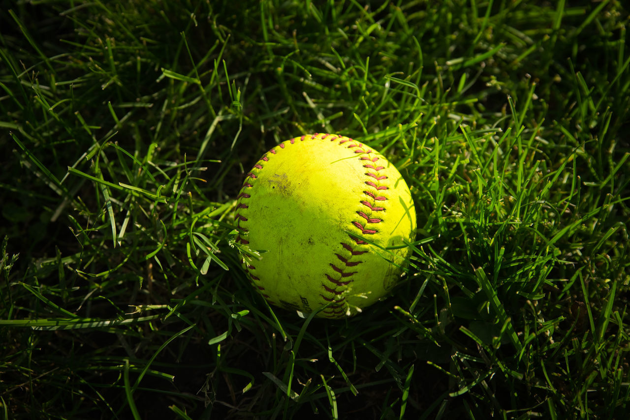 sport, baseball - sport, baseball - ball, ball, green color, no people, close-up, plant, land, nature, day, yellow, grass, field, outdoors, growth, focus on foreground, selective focus, sphere, sports equipment