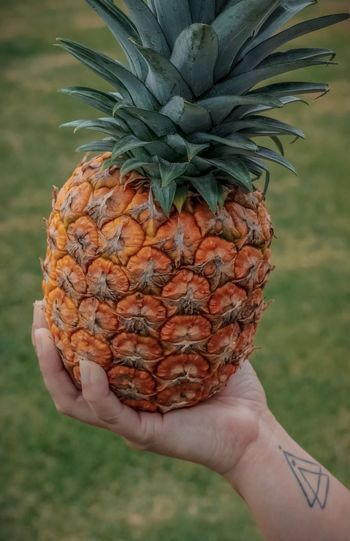 Tropical Tattoo Textured  Human Hand Hand One Person Human Body Part Holding Real People Food Tropical Fruit Pineapple Fruit Personal Perspective Food And Drink Healthy Eating Lifestyles Freshness