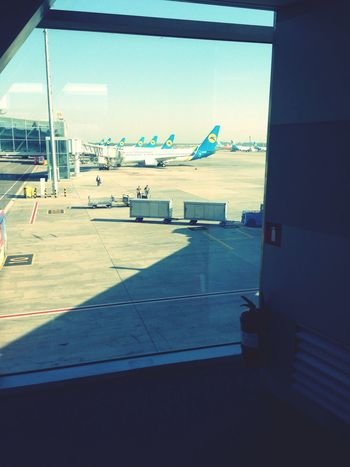 Travel Fly Airport Airplane