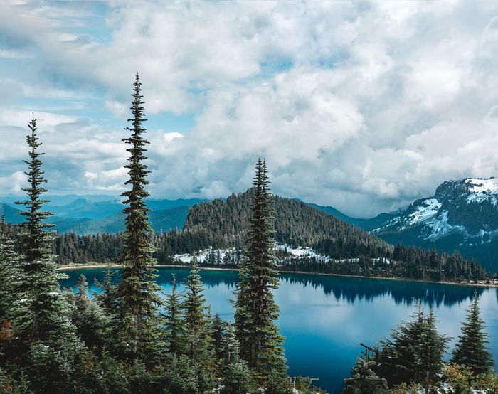 Summit Lake Landscape Landscape_Collection Pacific Northwest  Washington Travelphotography Tall Trees Mountain Range Lake Lake View Nature Photography Hiking Earth Color Snowcapped Mountain Mountains And Sky Reflection Cloud - Sky Water Lake Tree Outdoors Sky Mountain Nature