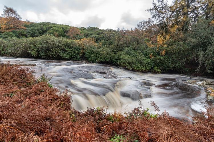 Autumn Walk Autumn TreePorn Flowing Water River Avon Bracken Clouds And Sky Fall Season  Long Exposure Water River Riverside Dartmoor
