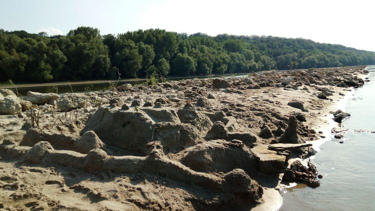 Croatia🇵🇾 Dunav Natural Danube Water Priroda Nature Voda Sands Sand Fortress Day Daylight Hot Day ☀ Beach Shells Trees Sky No People Summer Outdoors