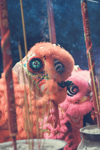 Animal Themes Bird Close-up Day Lion Dance Mammal No People Outdoors Retail