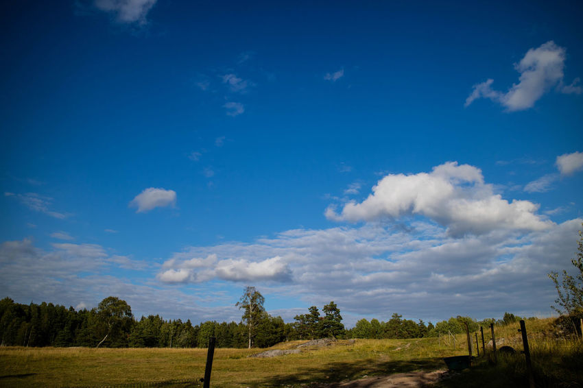 Beauty In Nature Blue Cloud - Sky Day Landscape Nature No People Outdoors Rural Scene Scenics Sky Tranquil Scene Tranquility Tree