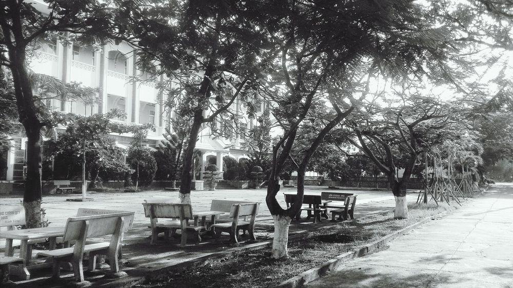 Trường của em be bé School University University Campus
