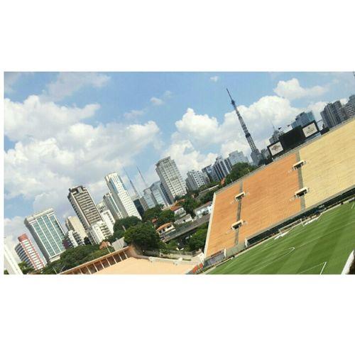 Querida vou te mostrar o que é São Paulo ?