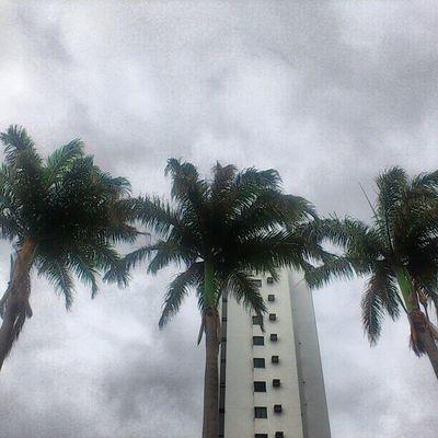 Bom dia quarta-feira! Será que vai chover?