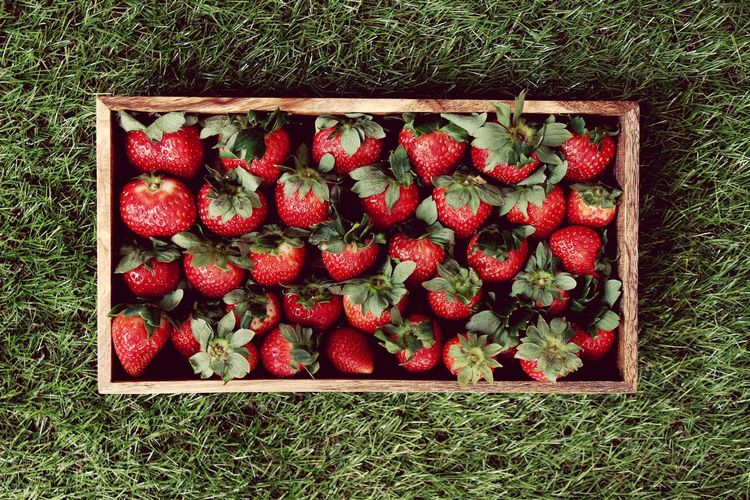 High angle view of strawberries in container