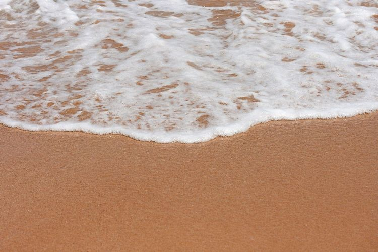 Sand Beach Nature Backgrounds No People Wave Day Sea Outdoors Track - Imprint Close-up Beauty In Nature Paw Print