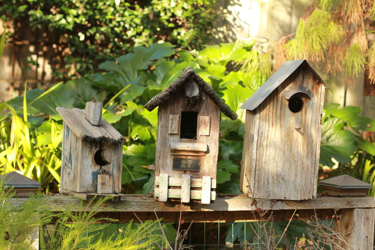 Birdhouses on wooden planks against plants in yard