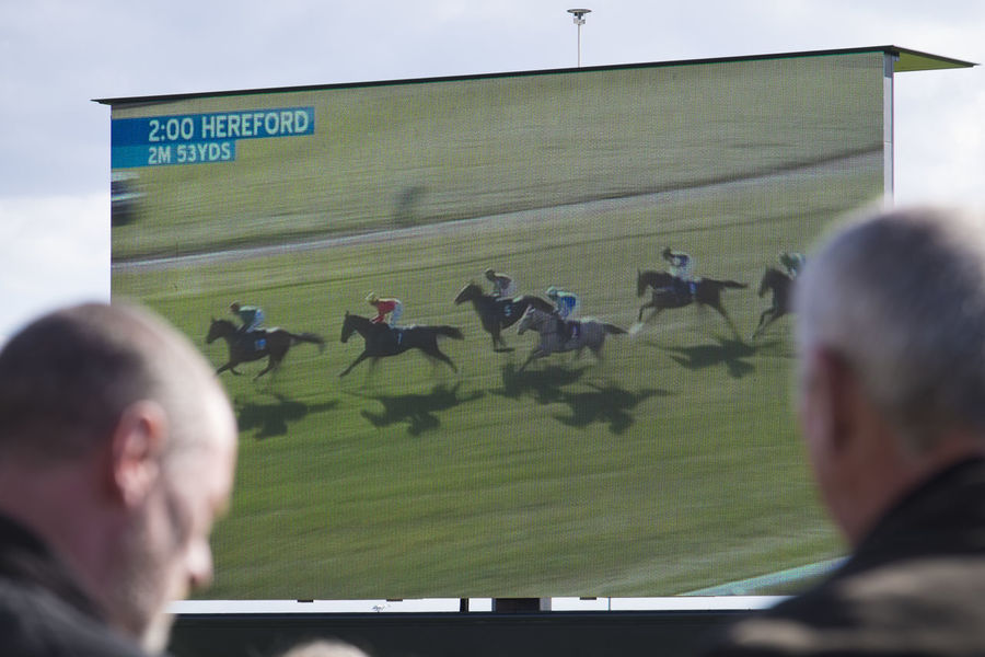 Big video screen at the horse races Big Screen Fan - Enthusiast Horse Race Horse Racing Men People Spectator Sport Sports Event  Sports Venue Video Wall