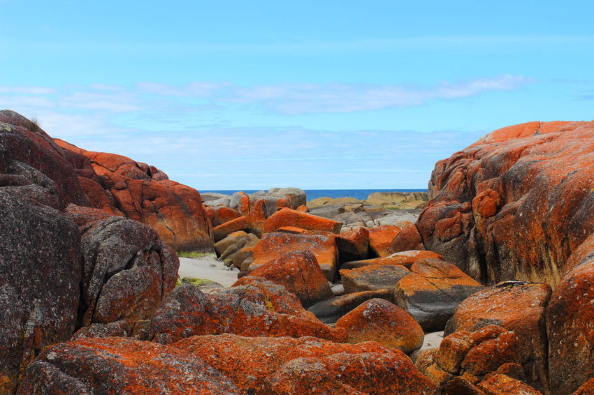 Australia Australian Landscape Bay Of Fire Bay Of Fires Beauty In Nature Nature Tasmania TasmaniaAustralia Beach Rock - Object Day Outdoors Landscape Water Blue Sky No People Coastline Clear Sky Rockformation Sea Sand Horizon Over Water Coast Ocean Been There.