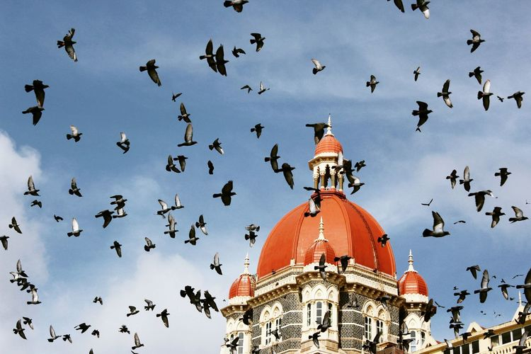 Indiantourism Mumbai Gatewayofindia Thetaj