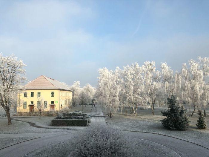 Wintertime Sky