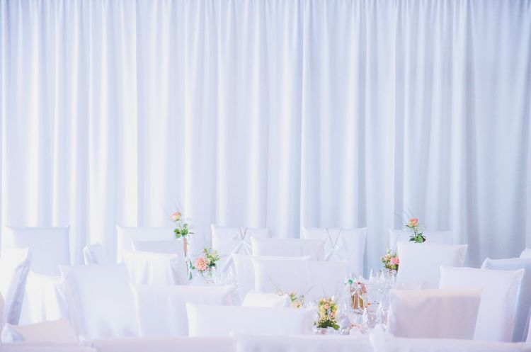 A Special Day Celebration Wedding Decoration White Curtain White Chairs Roses Bright The Day Festive Classic Life Events Happy Day Festivities